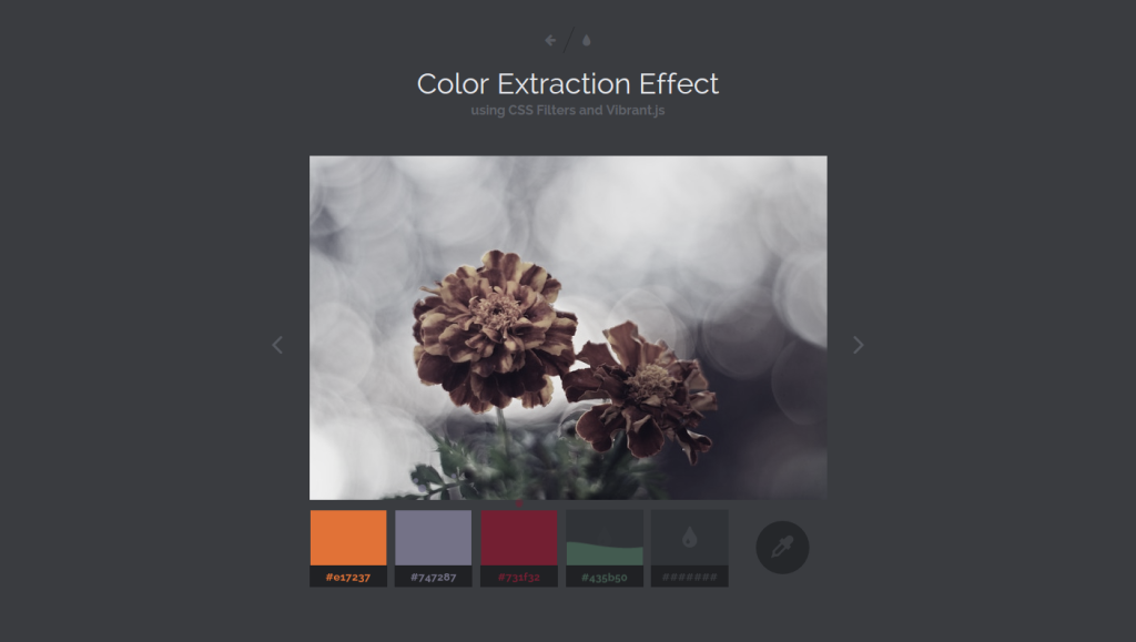 Color Extraction Effect with Vibrant.js